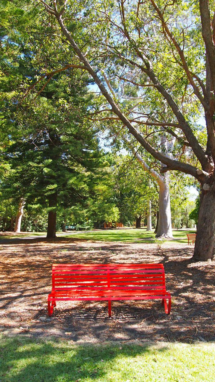 Kings Park Earthing
